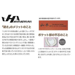 画像4: ハタケヤマ 硬式用ファーストミット(PBWシリーズF1型)